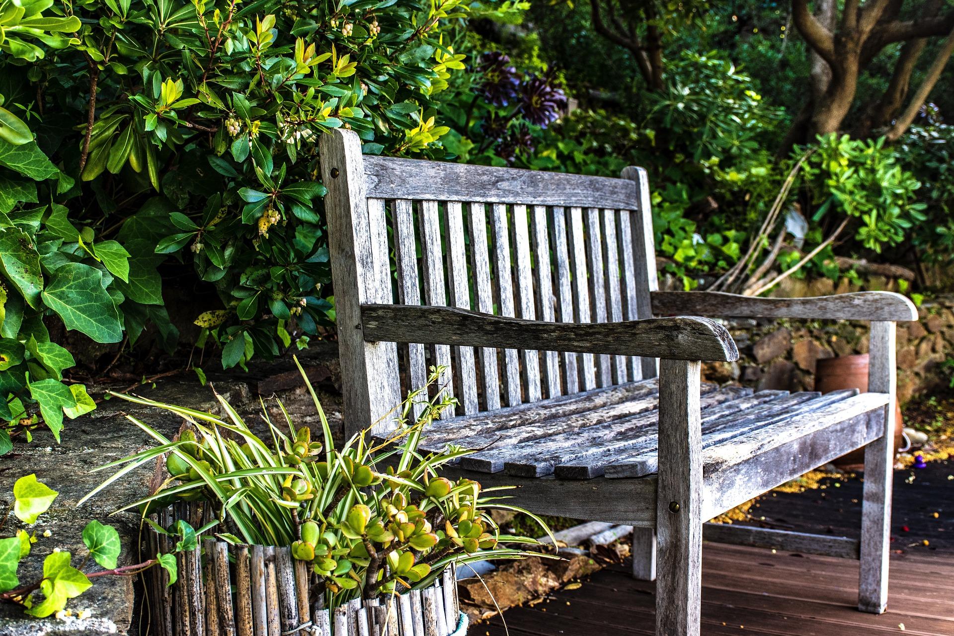 Hagearbeid- Gammel trebenk i grønn hage