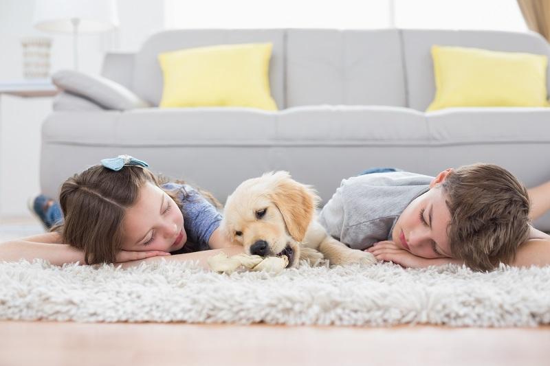 tepperens-barn-som-koser-med-hund-på-teppet
